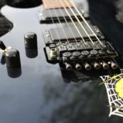 Купить наклейку Kirk Hammett Spider