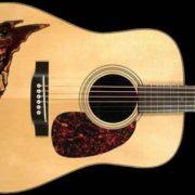 acoustic_enl