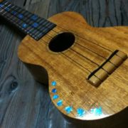 cherepashki-dlja-ukulele 3