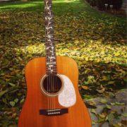 Наклейки на гриф гитары в виде ветки с листьями
