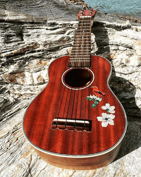 Купить красивые виниловые наклейки для укулеле