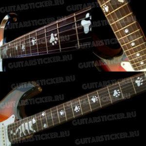 Кот и кошачьи следы на гриф гитары