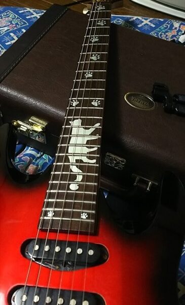 Кошачьи лапки на гитару