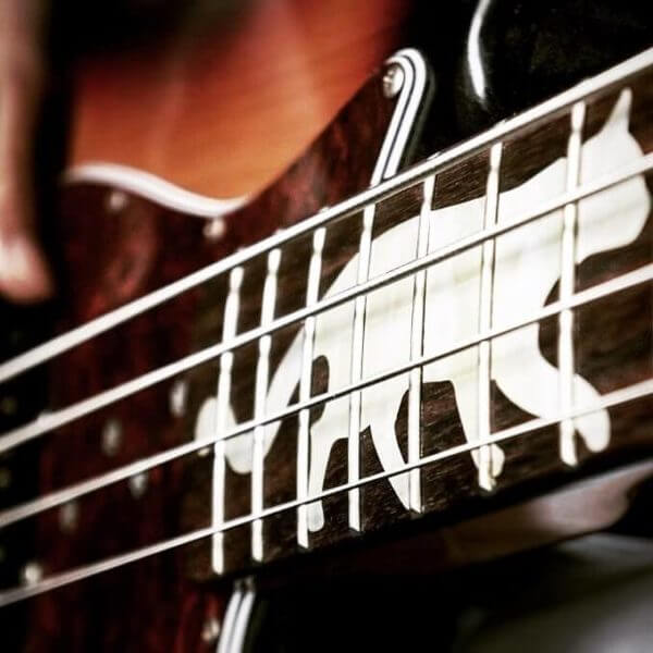 Наклейки кота на гриф гитары