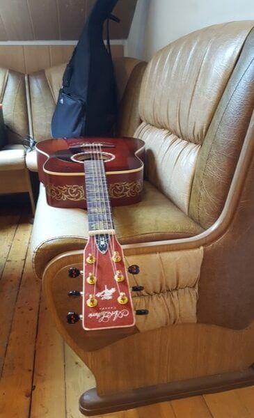Купить виниловые наклейки на обечайку гитары