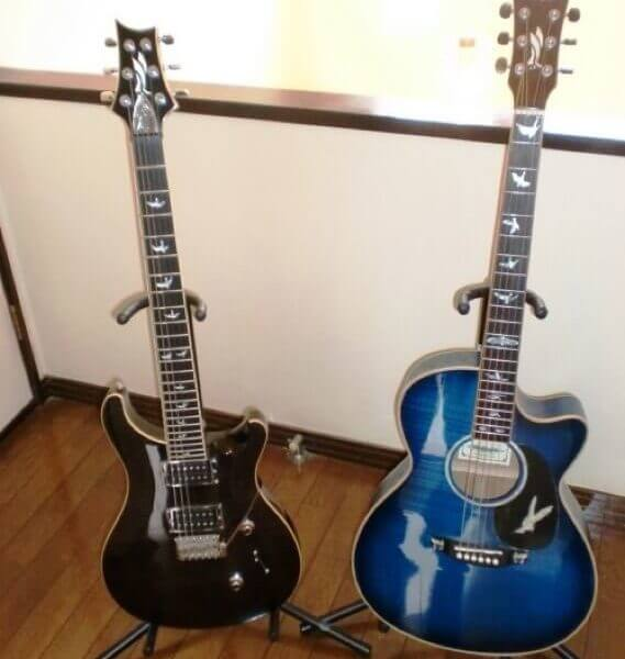 Гитары с наклейка в виде птиц на грифе гитары