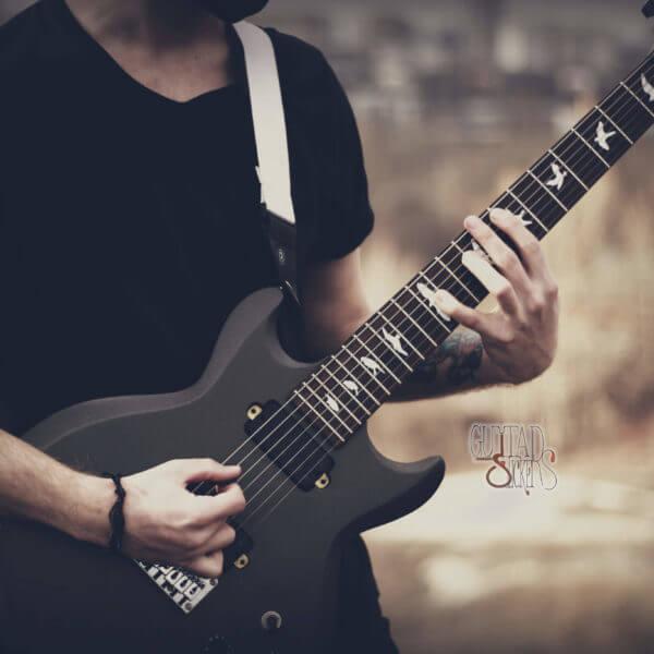 Купить виниловые наклейки на гриф гитары в виде птичек