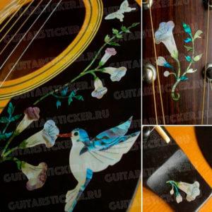 Красивые виниловые наклейки для акустической гитары