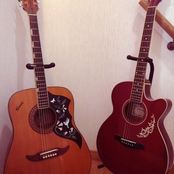 Украшения для акустической гитары купить
