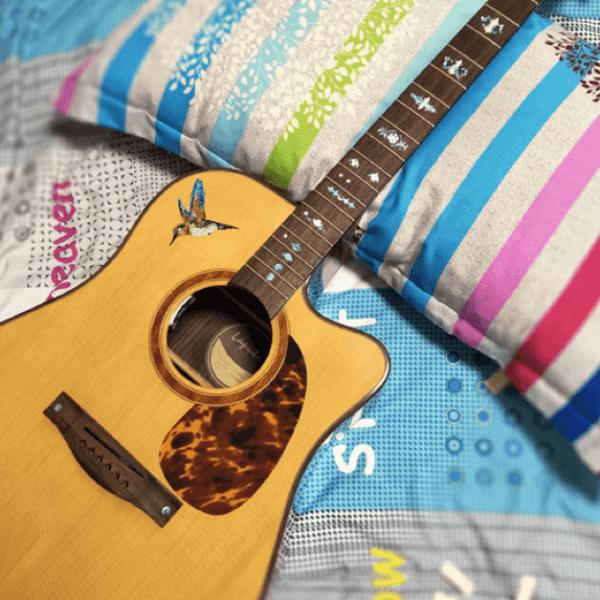 Купить наклейку колибри для гитары