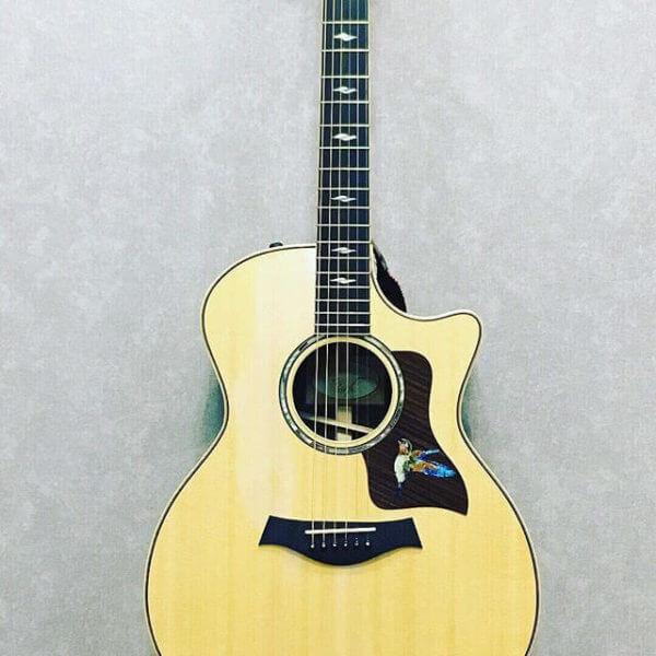 Купить красивые наклейки колибри для гитары