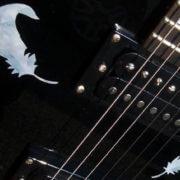 Перья на гитаре