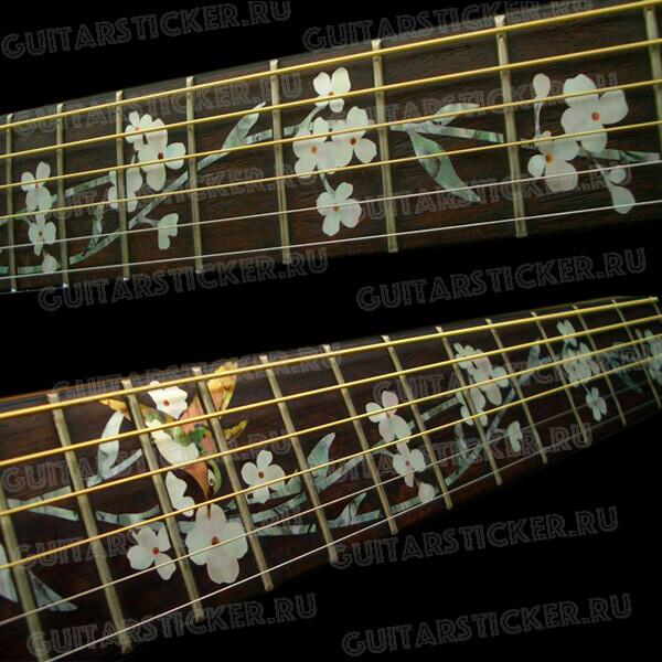 Купить наклеек на гриф акустической гитары с птичкой колибри