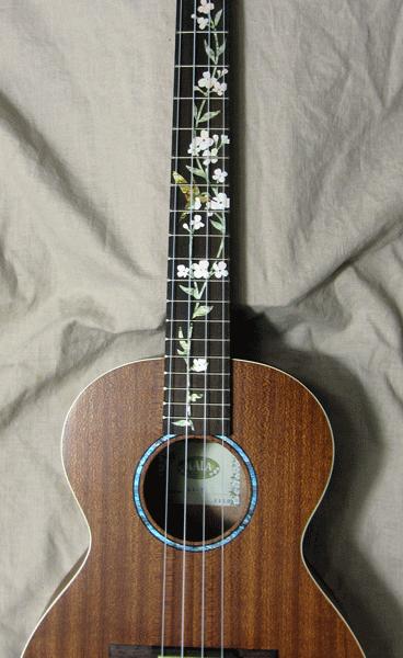 Купить наклейки колибри на гриф гитары