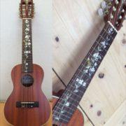 Купить комплект виниловых наклеек колибри на гриф акустической гитары
