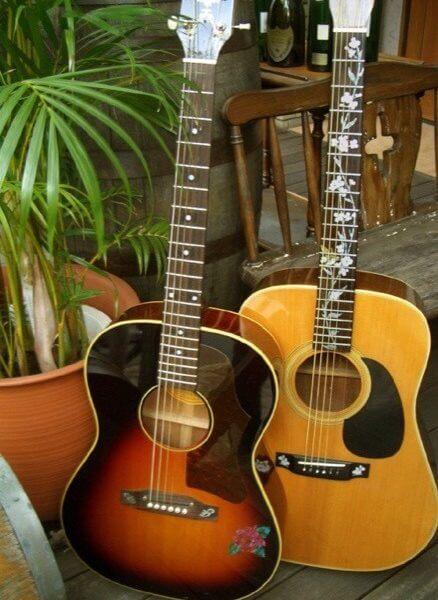 Отзывы о наклейка колибри на гриф гитары