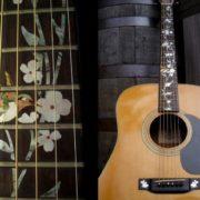 Колибри на гриф гитары 6