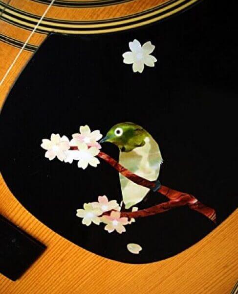 Наклейки для гитары с соловьем