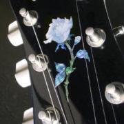 Как приклеить розу на гитару