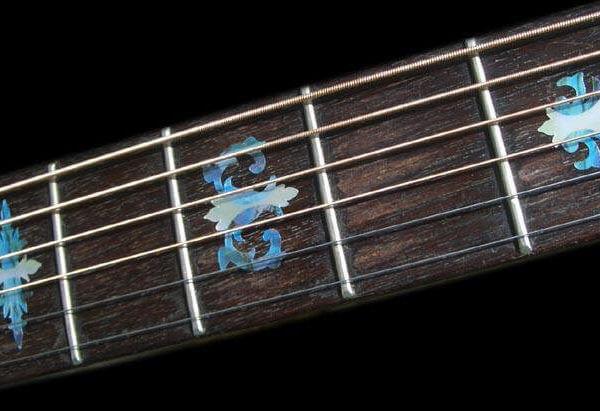 Наклейки на гриф банджо