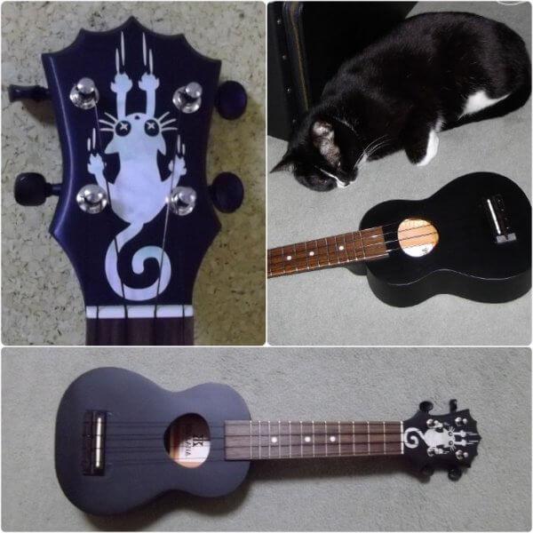Купить виниловые красивые наклейки на укулеле