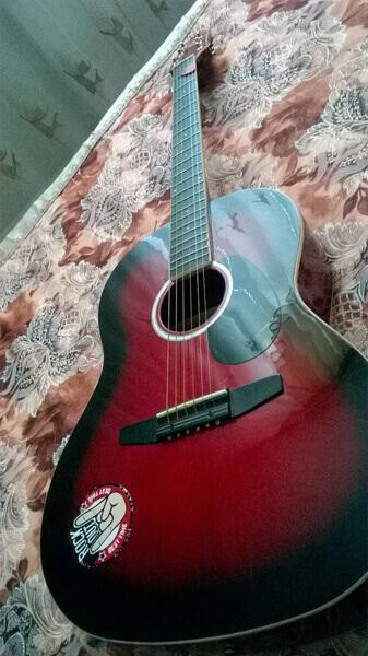 Купить гитарные наклейки в России