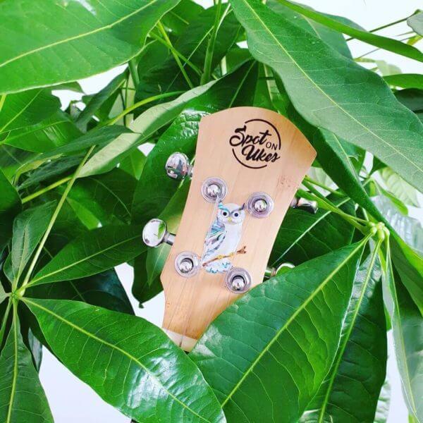 Наклейка сова на укулеле