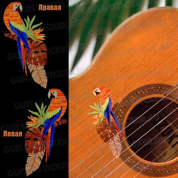 Попугай виниловая наклейка цветная