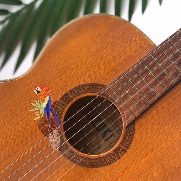 Виниловые наклейки попугаев для деки гитары